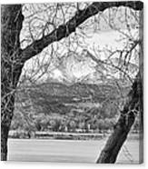 View Through The Trees To Longs Peak Bw Canvas Print