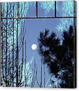 View Thru Frost Canvas Print