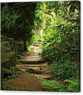 View To The Secret Garden Canvas Print