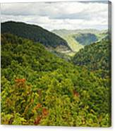 View To The Valley Canvas Print