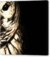 Vigilant In Darkness Canvas Print