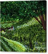 Villa By Jrr Canvas Print