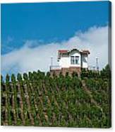Villa In Vineyards Canvas Print
