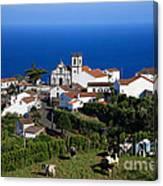 Village In Azores Islands Canvas Print