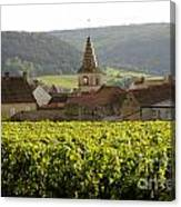 Village Of Monthelie. Burgundy. France Canvas Print