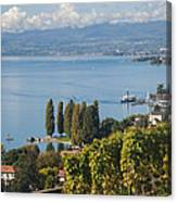 Vines Over Lake Geneva Canvas Print
