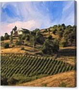 Vineyard Near Avila Beach Canvas Print
