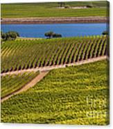 Vineyard On A Lake Canvas Print