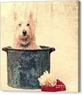 Vintage Bathtime Canvas Print