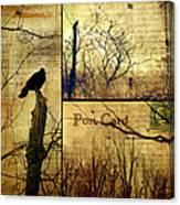 Vintage Birds Collage Canvas Print
