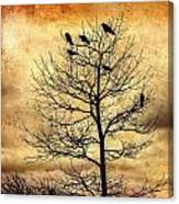 Vintage Blackbirds On A Winter Tree Canvas Print