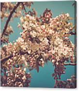Vintage Blossom Canvas Print