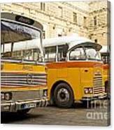 Vintage British Buses In Valetta Malta Canvas Print