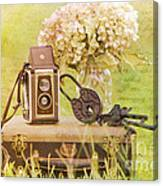 Vintage Camera And Case Canvas Print