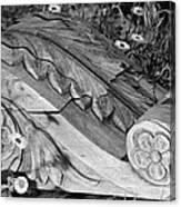 Vintage Carved Facade  Canvas Print