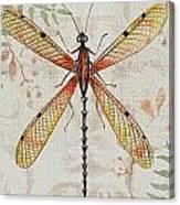 Vintage Dragonfly-jp2563 Canvas Print