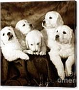 Vintage Festive Puppies Canvas Print