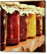 Vintage Fruit And Vegetable Preserves I Canvas Print