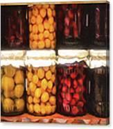Vintage Fruit And Vegetable Preserves II Canvas Print