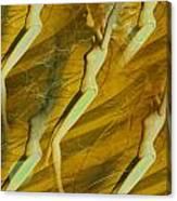 Vintage Matrix Canvas Print