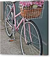 Vintage Pink Bicycle With Pink Flowers Art Prints Canvas Print