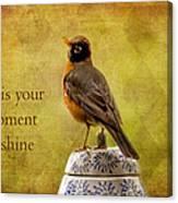 Vintage Proud Robin Canvas Print