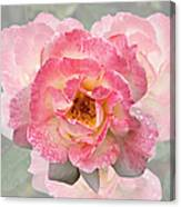 Vintage Rose Square Canvas Print