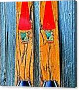Vintage Skis Canvas Print