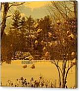 Vintage Snow Blossoms Canvas Print