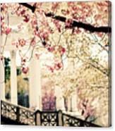 Grecian Garden Canvas Print