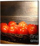 Vintage Tomatoes Canvas Print