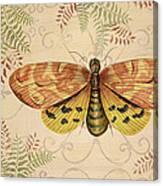 Vintage Wings-paris-c Canvas Print