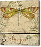 Vintage Wings-paris-e Canvas Print