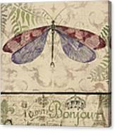 Vintage Wings-paris-f Canvas Print