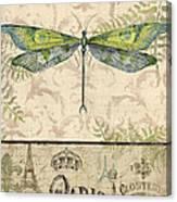 Vintage Wings-paris-g Canvas Print