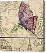 Vintage Wings-paris-i Canvas Print