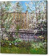Viola's Apple And Cherry Trees Canvas Print