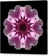 Violet And White Dahlia I Flower Mandala Canvas Print