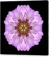 Violet Dahlia II Flower Mandala Canvas Print