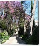 Violet Tree Alley Canvas Print