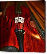 Violin Study Canvas Print