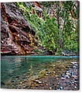 Virgin River Zion National Park Utah Canvas Print