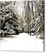Virgin Snow Canvas Print