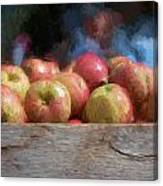 Virginia Apples Canvas Print