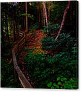 Virginia Morning Canvas Print