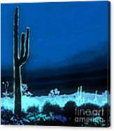 Vision Of A Desert Night Canvas Print