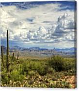 Visions Of Arizona  Canvas Print