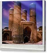 Visitor Canvas Print