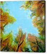 Vista Of The Past Canvas Print