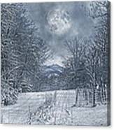Visual Quiet Canvas Print